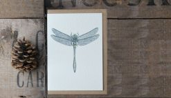 Dragonfly A6 greetings card with Kraft envelope