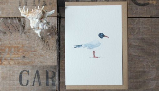 Gull A6 greetings card with Kraft envelope