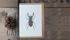 Stag Beetle A6 greetings card with Kraft envelope