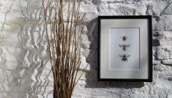 Three Bees large framed botanic art print