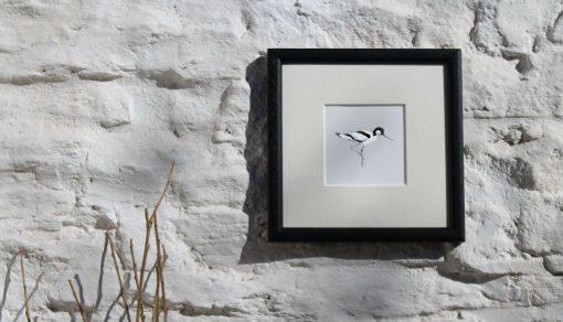 Avocet framed seabird art print