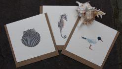Coastal Designs notecards 6 pack