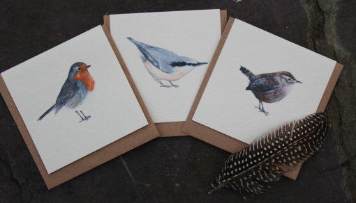 Garden Birds Designs notecards 6 pack
