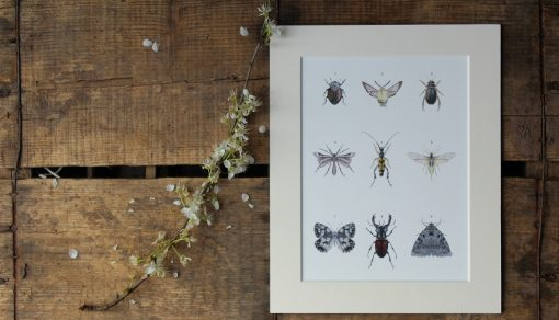 Nine Insects unframed botanic art print