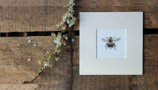 Bee unframed botanic art print