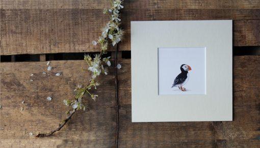 Puffin unframed seabird print