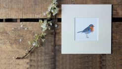 Robin unframed garden bird print
