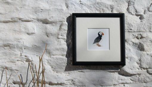 Puffin framed Seabird Art Print