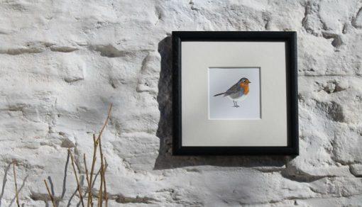 Robin square framed garden bird print