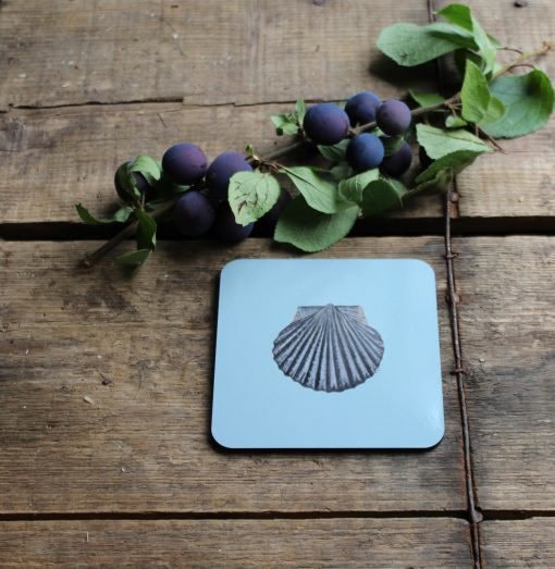 Scallop Shell melamine coasters